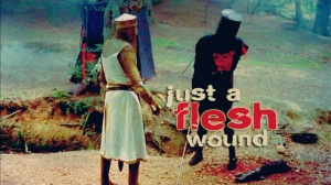Just-A-Flesh-Wound-monty-python-and-the-holy-grail-4964886-800-450